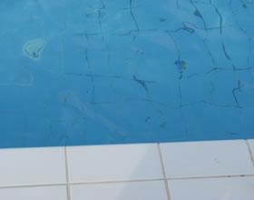 obiekty z basenem na wakacje